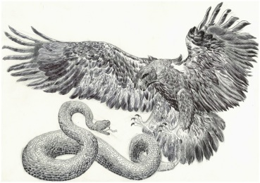 Aigle vs serpent