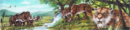Rosanna Giampaolo- tigre con i denti a sciabola